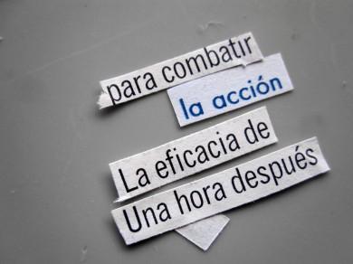 accion_web